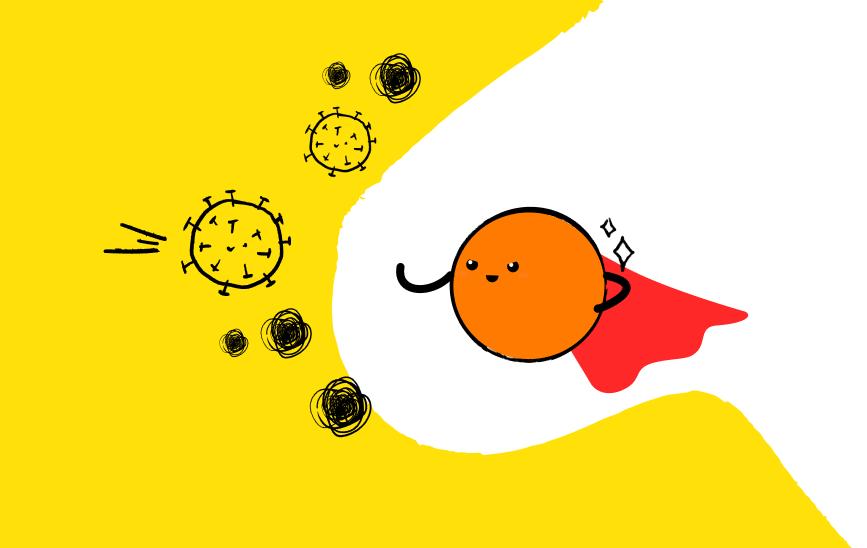 Роль инозитола вжизнедеятельности организма